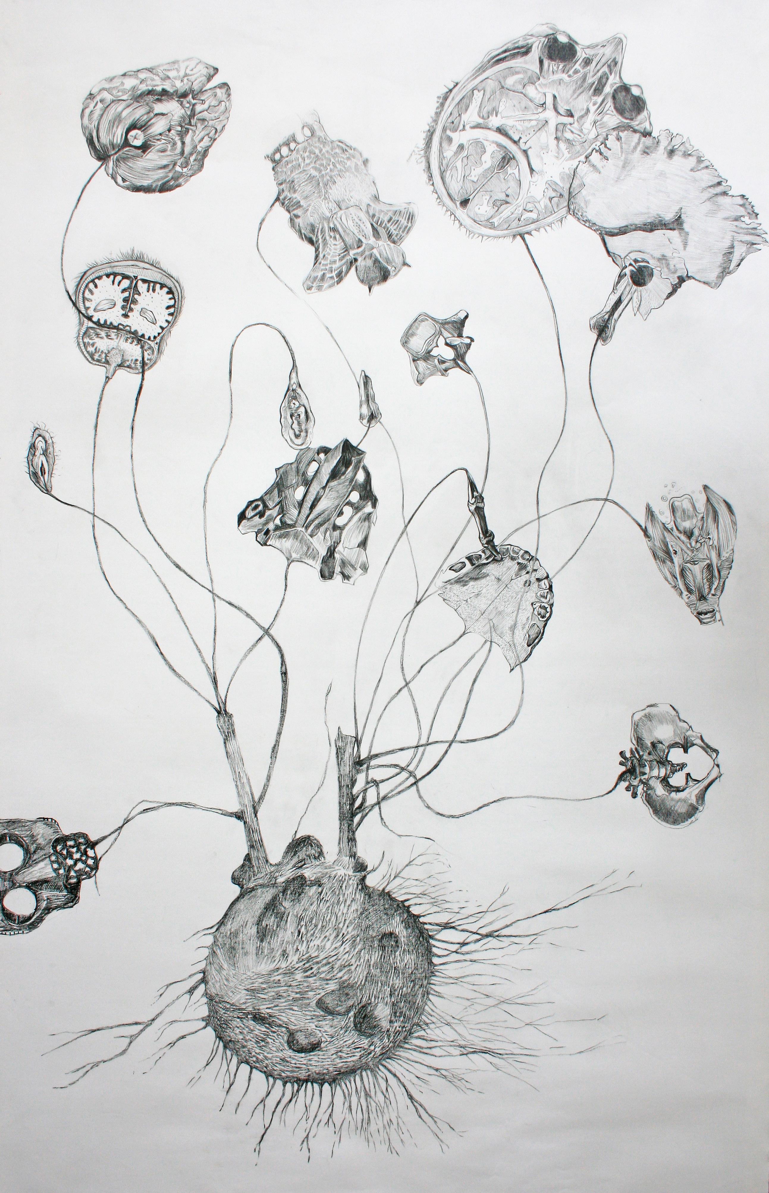 cycle-amen-2011-pierre-noire-sur-papier-entoilc3a9-140x87cm.jpg