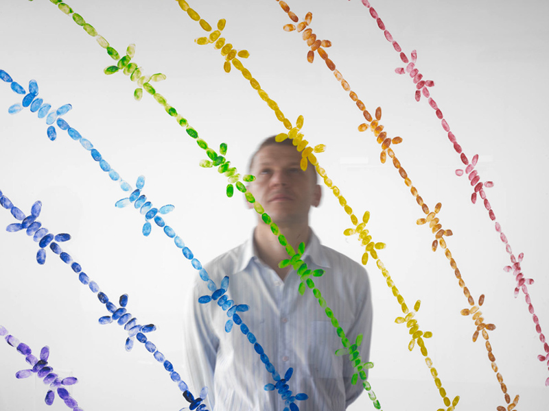 Mircea Cantor Rainbow, 2011 Panneaux de verre, empreintes digitales de l'artiste, encre de gravure 250 x 500 cm Production - Centre d'art contemporain d'Ivry – le Crédac Courtesy Mircea Cantor