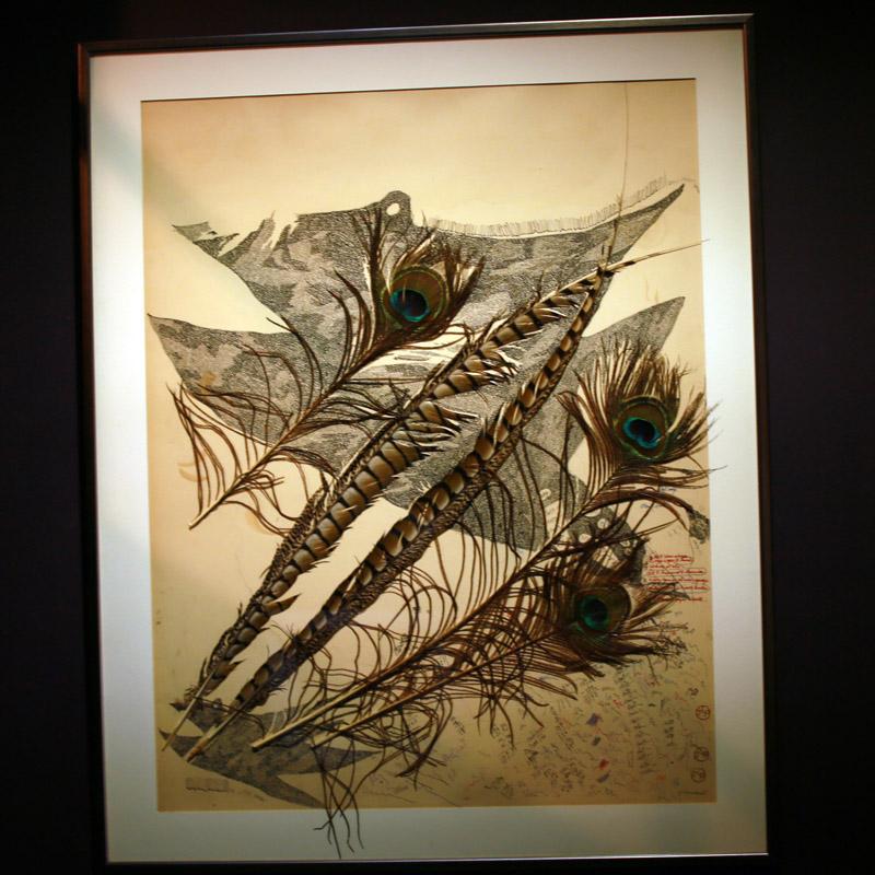 Jean Luc parant- Herbier aux plumes de paons- courtesy de l'artiste et de la galerie da-end- copyright artefact photography