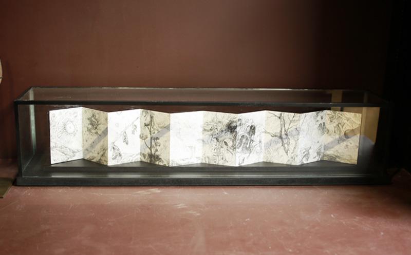 Pascal Pillard - carnet d'un naturaliste de l'intime- courtesy de l'artiste et de la galerie da-end